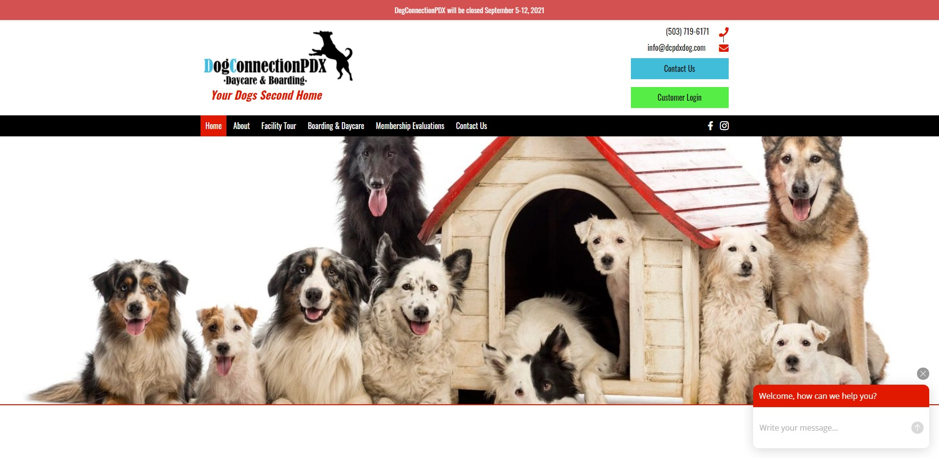 Portland, OR's Best Doggy Day Care Centres