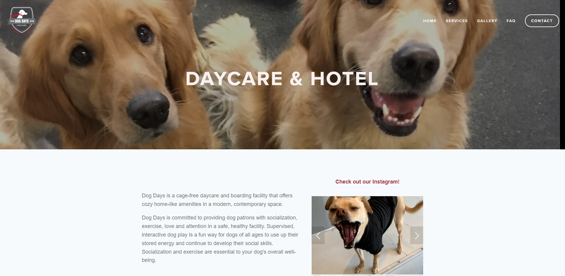 Portland, OR Best Doggy Day Care Centres