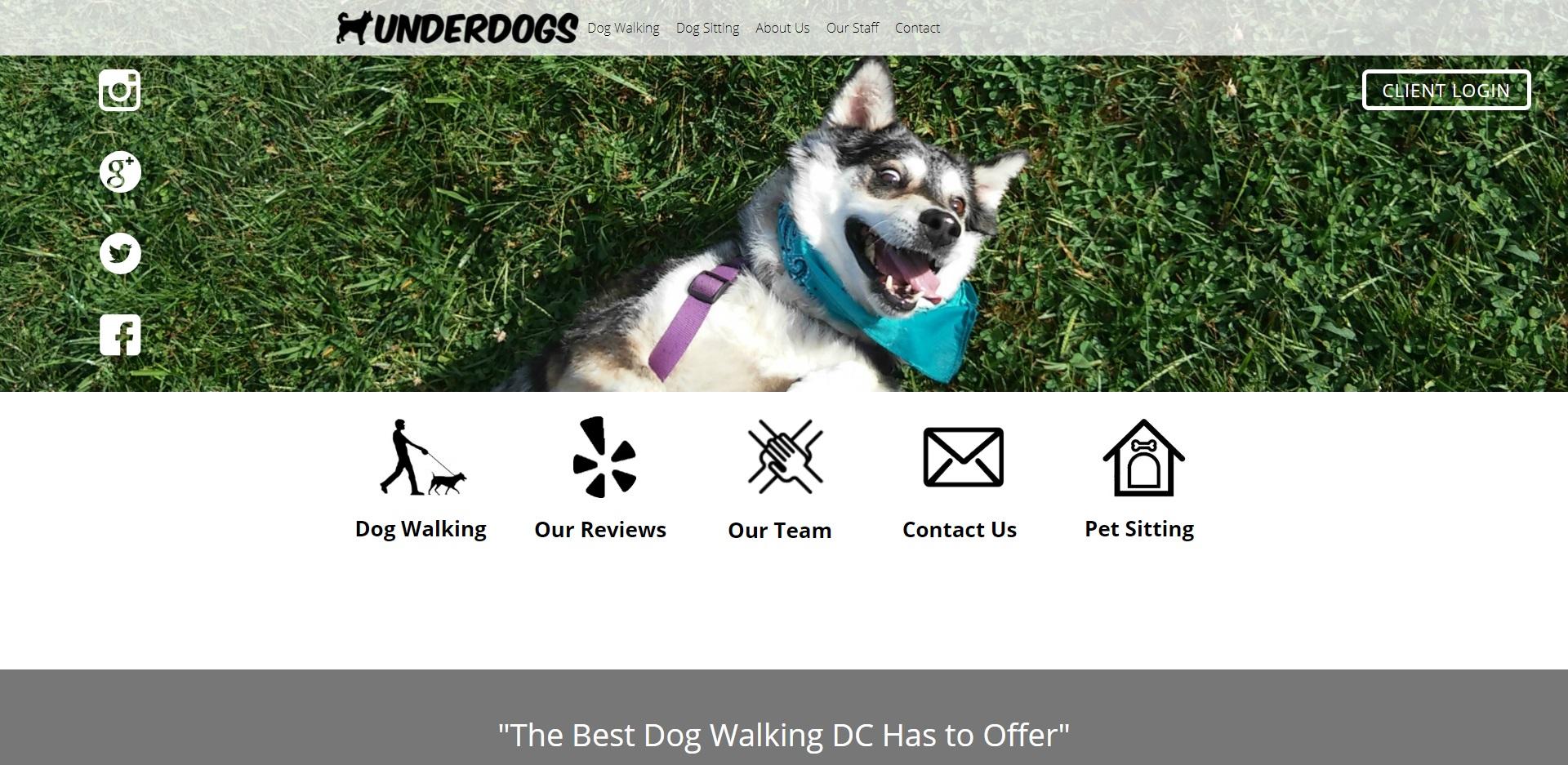Washington, DC Best Dog Walkers
