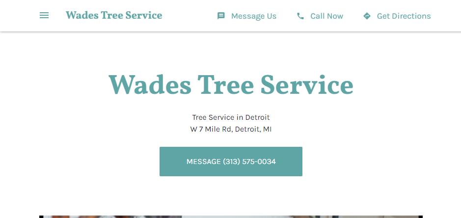 Efficient Arborists in Detroit