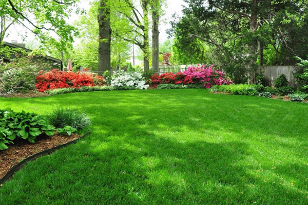 Top Landscaping Companies in Oklahoma City
