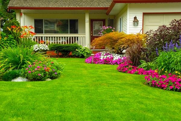 Landscaping Companies in Denver
