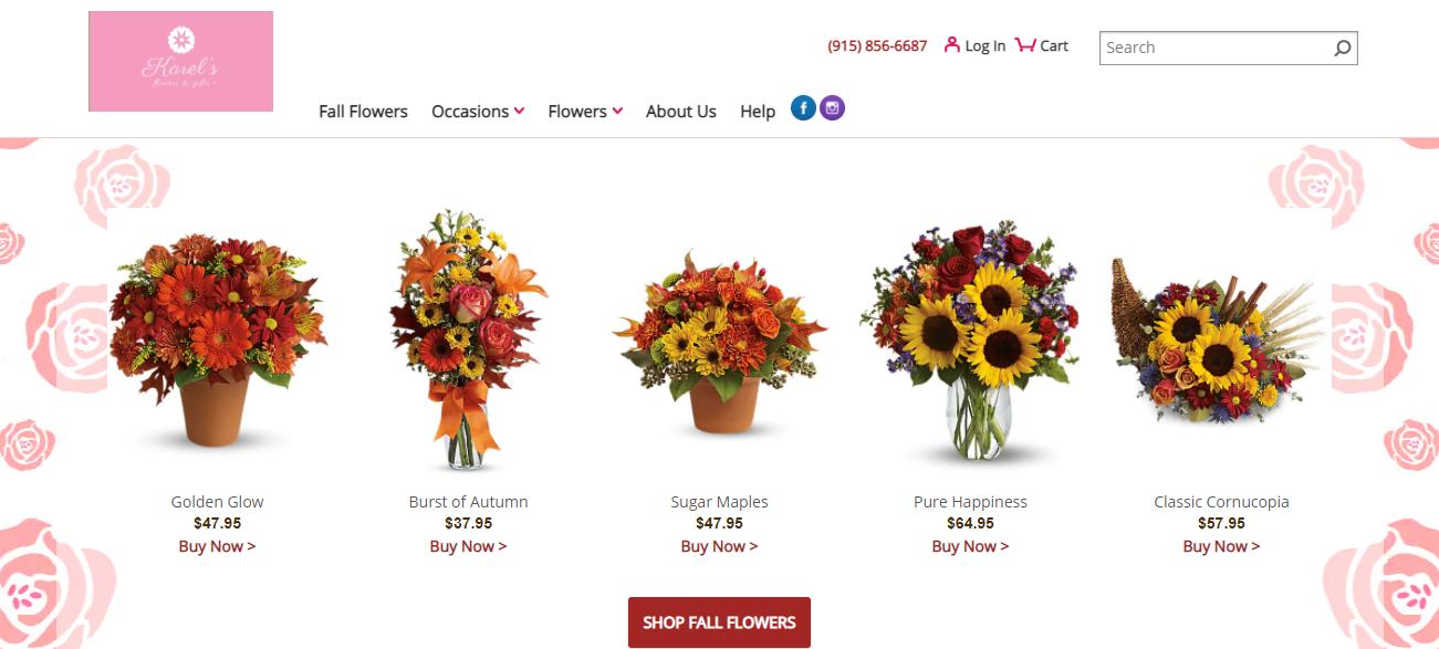 Karel's Flowers & Gifts in El Paso, TX