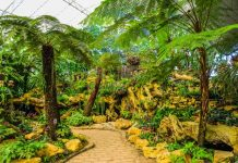 5 Best Landscaping Companies in Atlanta, GA